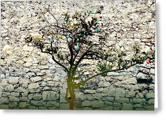 Mediterranean Garden With An Old Wall Greeting Card by Arsenije Jovanovic