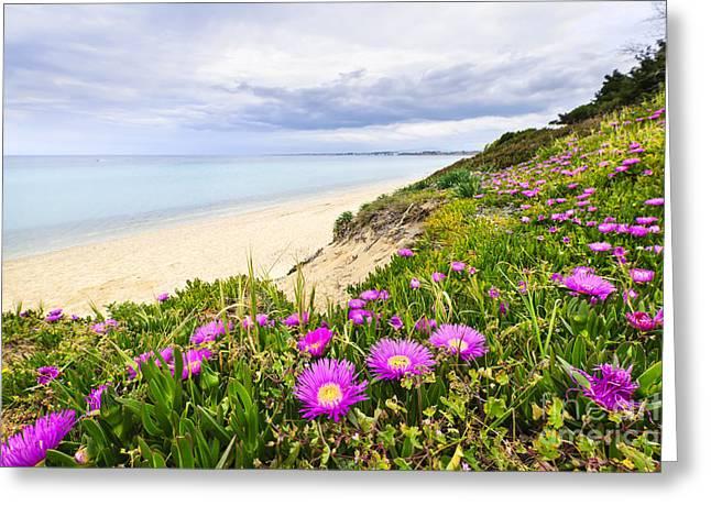 Mediterranean Landscape Greeting Card