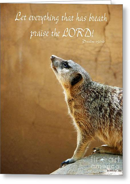 Meerkat Praise Greeting Card