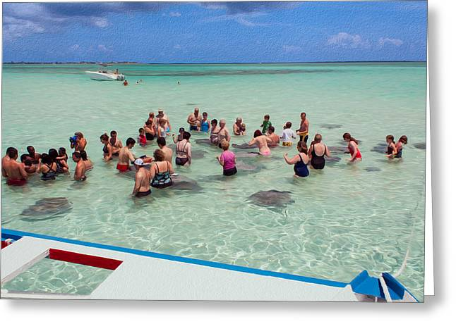 Meeting The Stingrays Greeting Card by John M Bailey