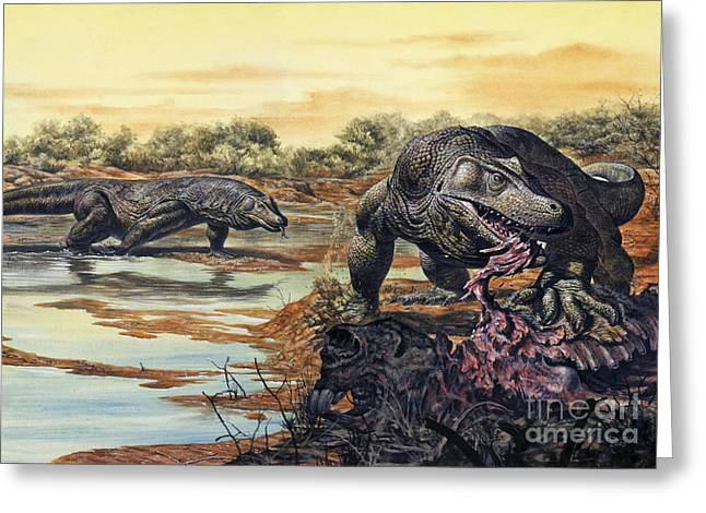 Megalania Giant Monitor Lizard Eating Greeting Card