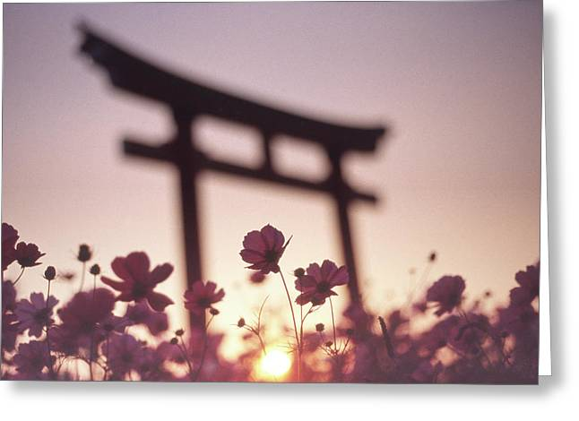 Melancholic Autumn Greeting Card by Koji Tajima
