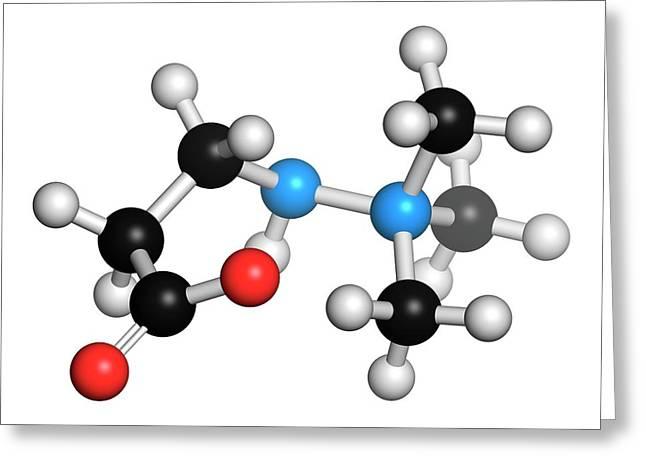 Meldonium Anti-ischemic Drug Molecule Greeting Card by Molekuul