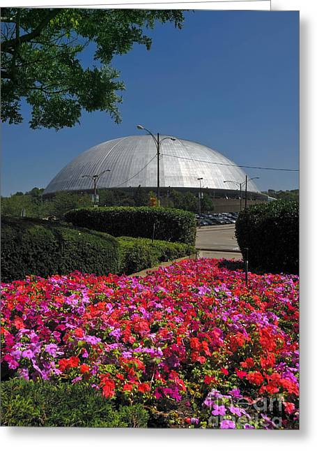 Mellon Arena Greeting Card by Amy Cicconi
