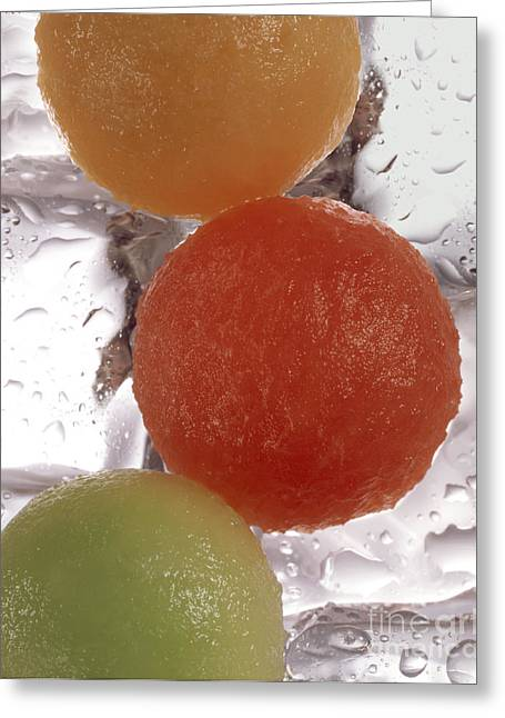 Melon Scoops Greeting Card by Rotem Studio