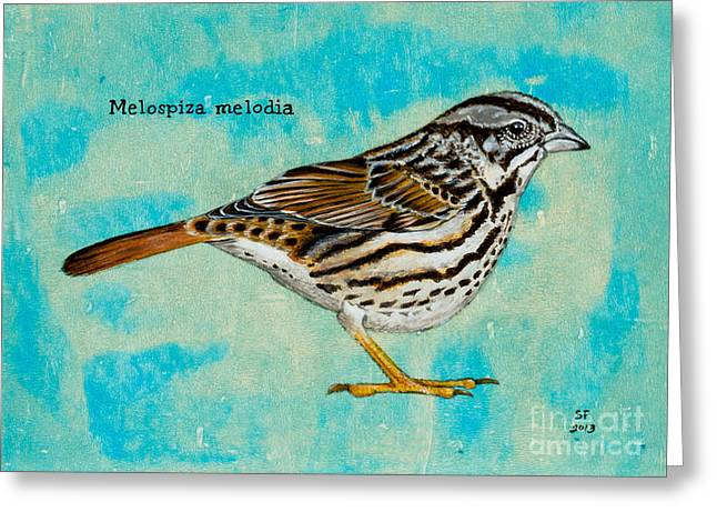 Melospiza Melodia Greeting Card