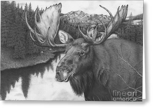 Melozi River Moose Greeting Card