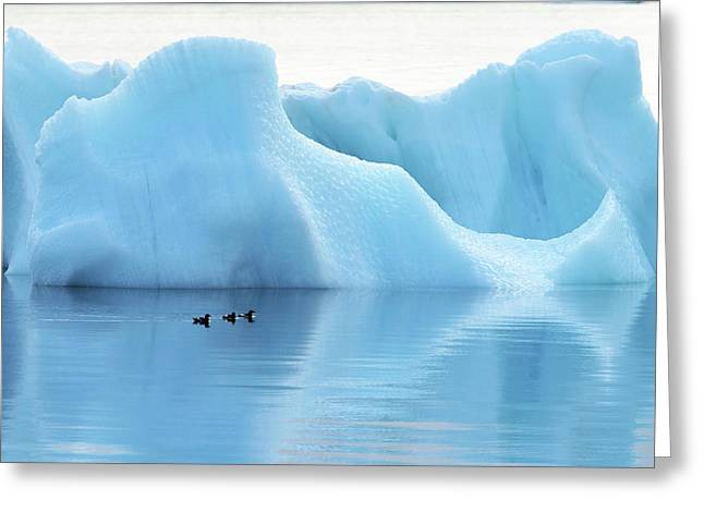 Melting Arctic Iceberg Greeting Card by Dr P. Marazzi