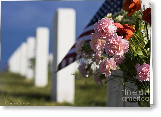 Memorial Day Beauty In The Sacrifice Greeting Card