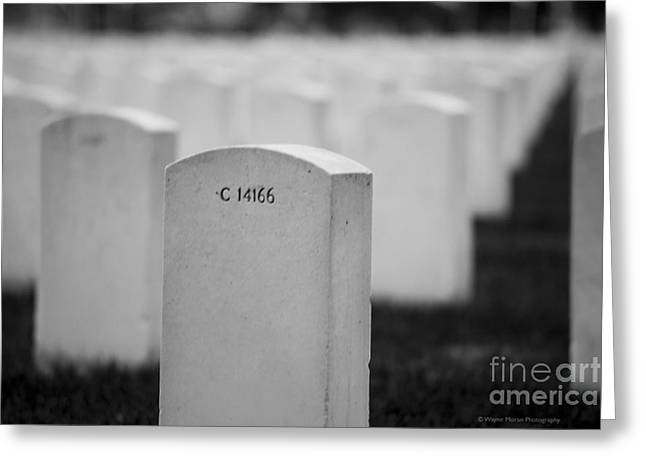 Memorial Day We Will Not Forget You. Greeting Card by Wayne Moran