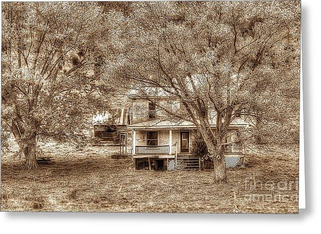 Memories Behind The Trees Greeting Card by Dan Friend