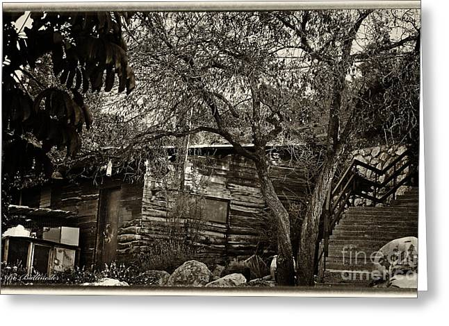 Memories In The Shade Of The Trees Greeting Card by Arik Baltinester