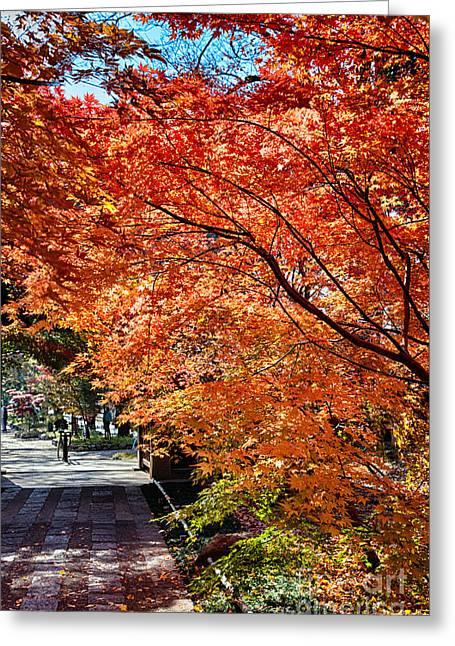 Memories Of Autumn-5 Greeting Card by Tad Kanazaki
