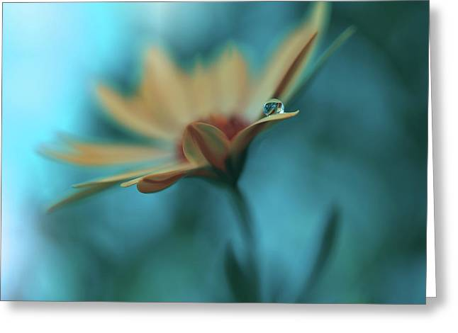 Memories Of Sea... Greeting Card by Juliana Nan