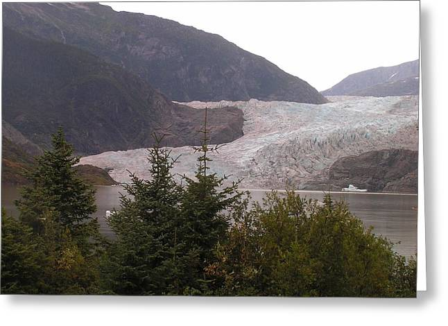 Mendenhall Glacier From The Path. Greeting Card