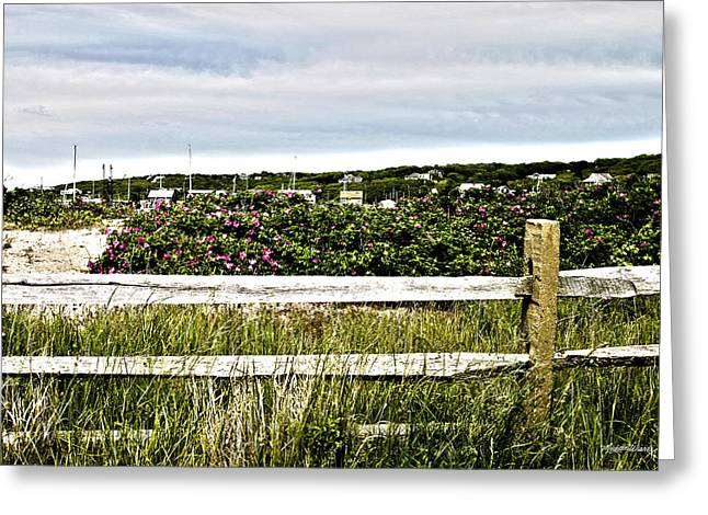 Menemsha Memories Greeting Card by Michelle Wiarda