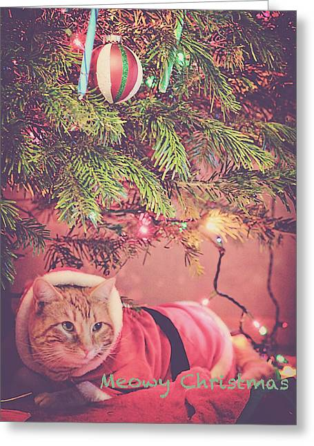 Meowy Christmas Greeting Card by Melanie Lankford Photography