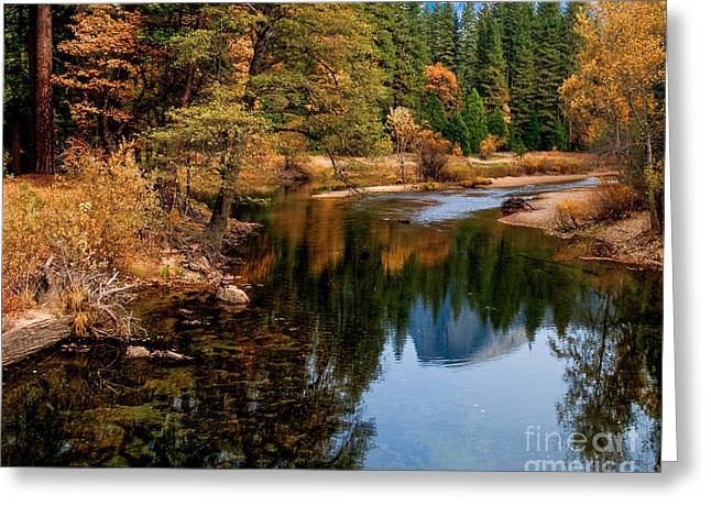 Merced River And Half Dome Greeting Card by Terry Garvin