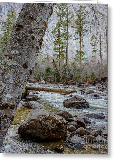 Merced River From Happy Isles Greeting Card