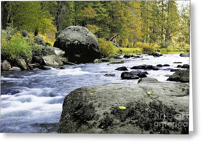 Merced River In Yosemite Greeting Card