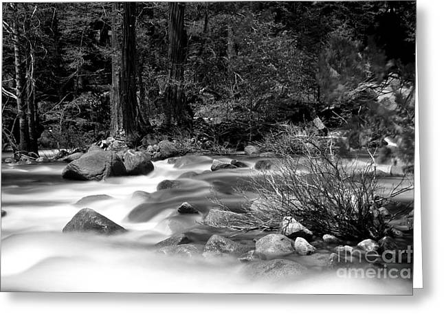 Merced River Greeting Card by Jason Abando