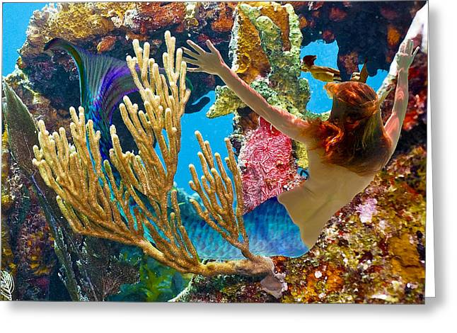 Greeting Card featuring the photograph Mermaid And Snorkeler by Paula Porterfield-Izzo