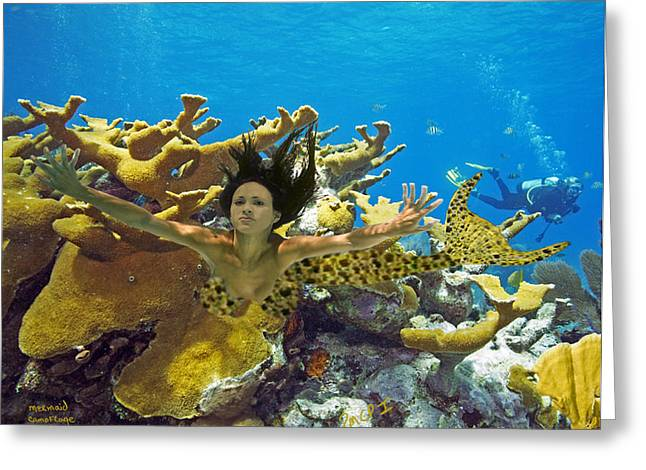 Greeting Card featuring the photograph Mermaid Camoflauge by Paula Porterfield-Izzo