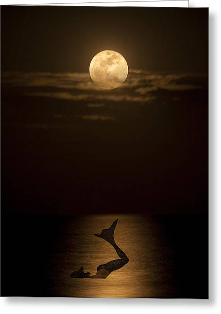 Greeting Card featuring the photograph Mermaid's Moonsong by Paula Porterfield-Izzo