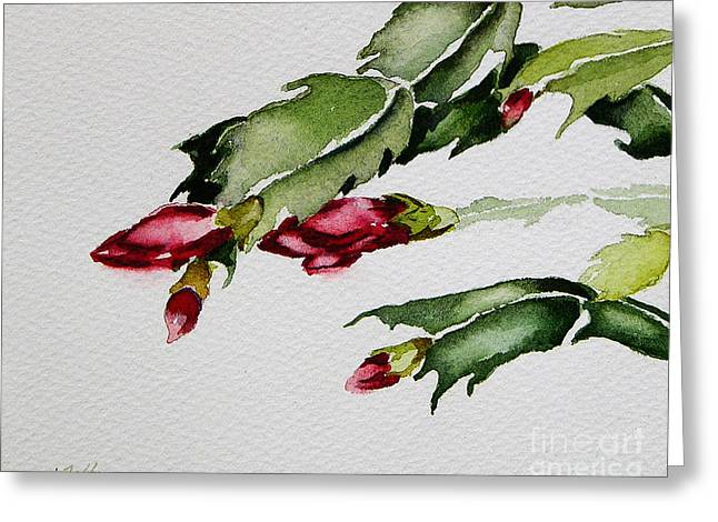 Merry Christmas Cactus 2013 Greeting Card