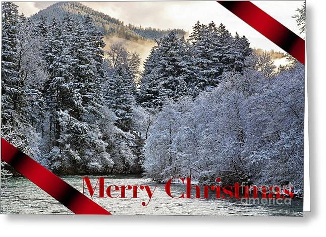 Merry Christmas Card Greeting Card by Belinda Greb