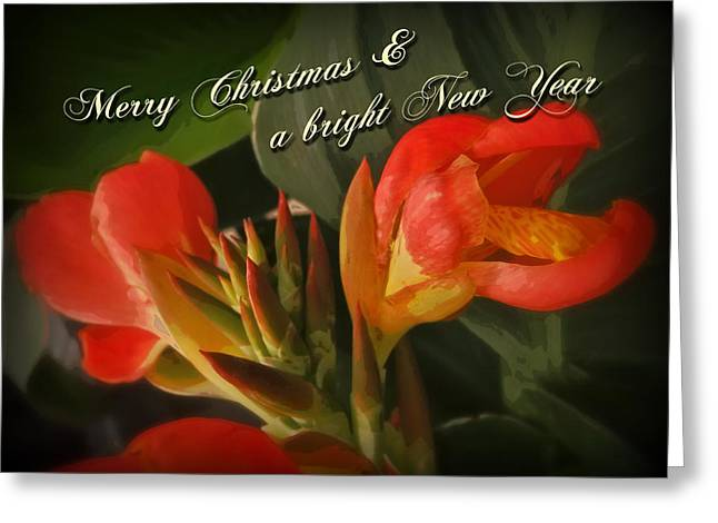Merry Christmas Happy New Year Card - Red Canna Lily Greeting Card by Mother Nature