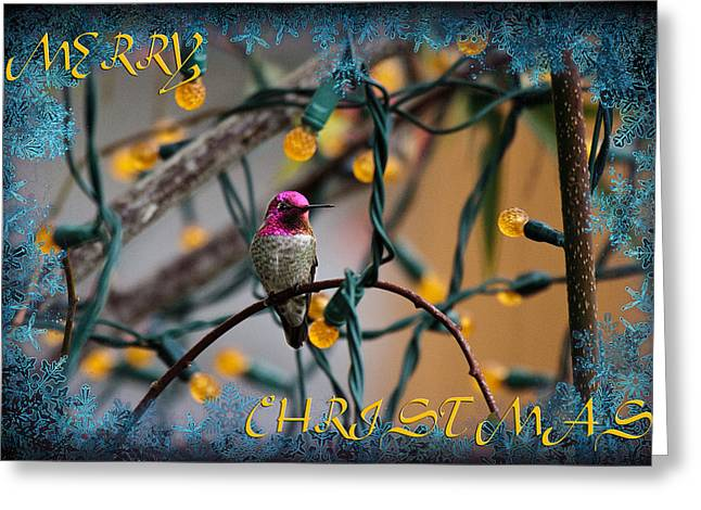 Merry Christmas Hummer Greeting Card