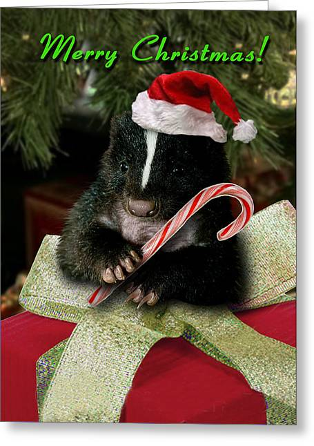 Merry Christmas Skunk Greeting Card by Jeanette K