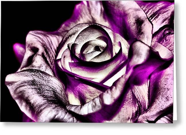 Mesmerizing Rose Greeting Card