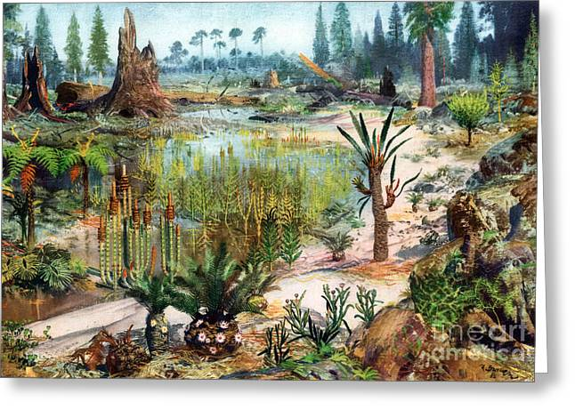Mesozoic Landscape Greeting Card by Science Source