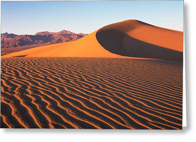 Mesquite Dunes 1 Greeting Card