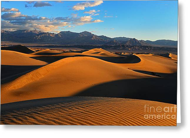 Mesquite Sand Dunes Death Valley Greeting Card by Peter Dang