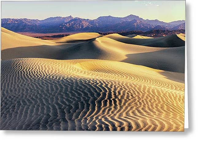 Mesquite Sand Dunes Greeting Card