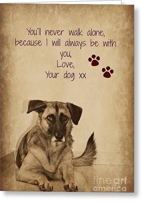 Message From Your Dog Greeting Card by Clare Bevan