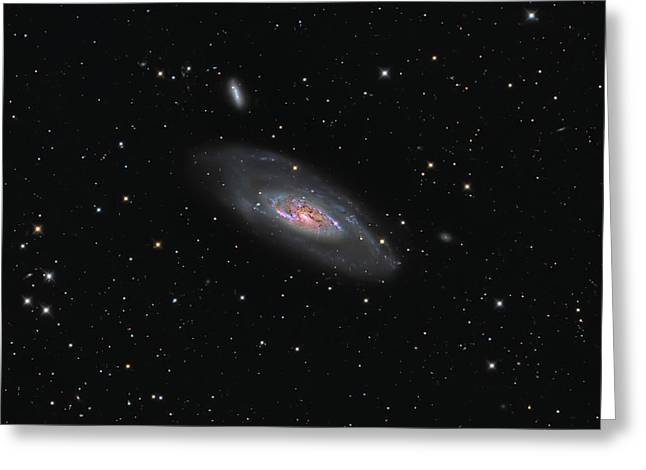 Messier 106, A Spiral Galaxy Greeting Card by Michael Miller