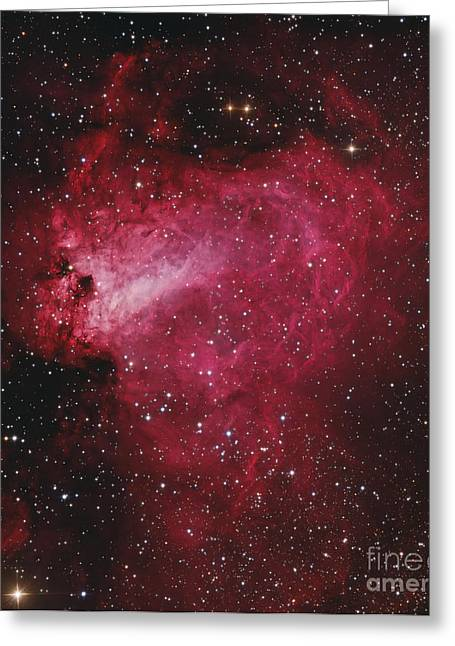 Messier 17, The Swan Nebula Greeting Card