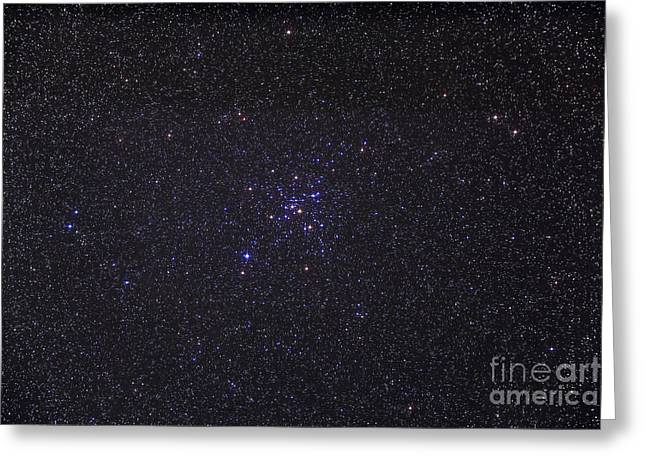 Messier 41 Below The Bright Star Greeting Card by Alan Dyer