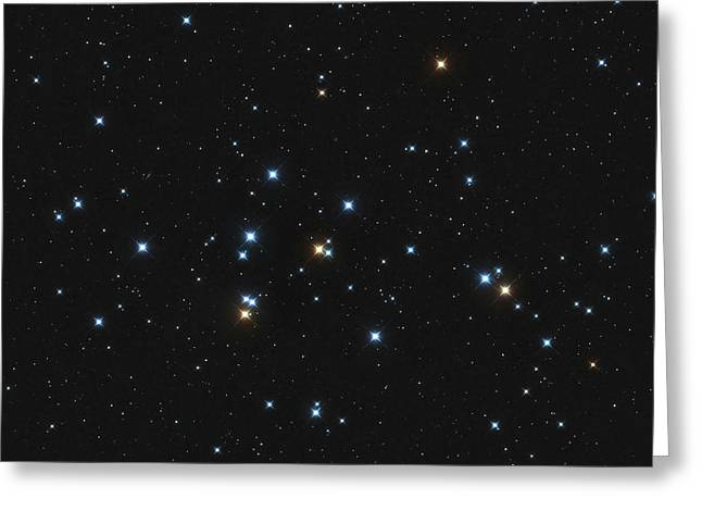 Messier 44, The Beehive Cluster Greeting Card
