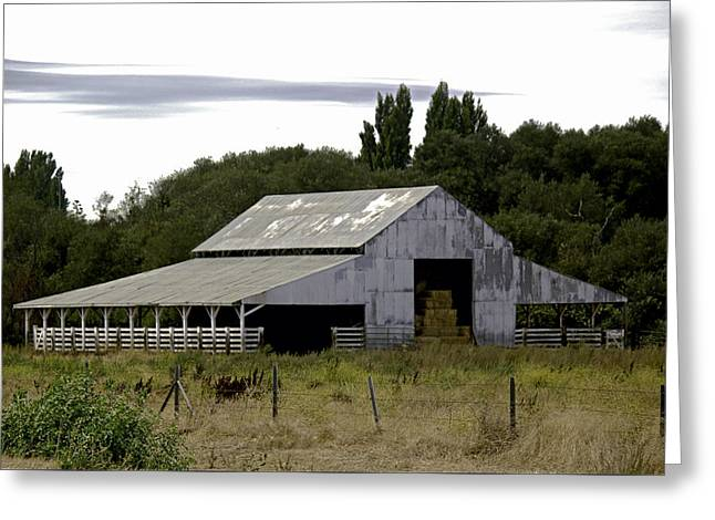 Greeting Card featuring the photograph Metal Hay Barn by William Havle