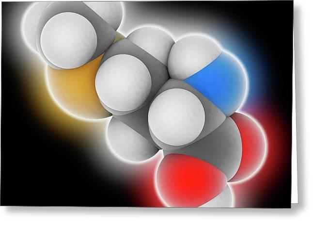 Methionine Molecule Greeting Card