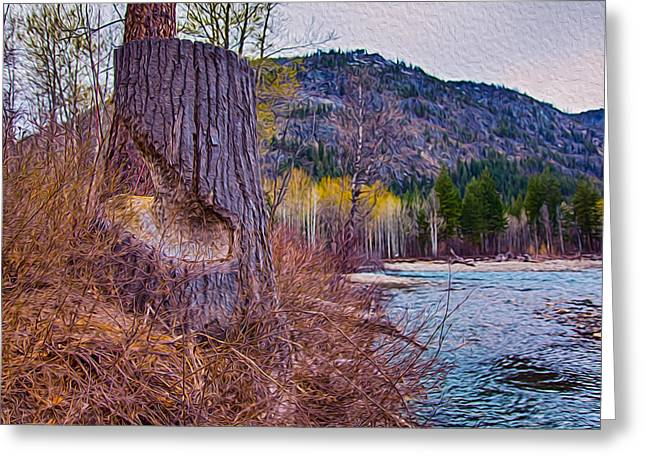 Methow Riverbank Greeting Card by Omaste Witkowski