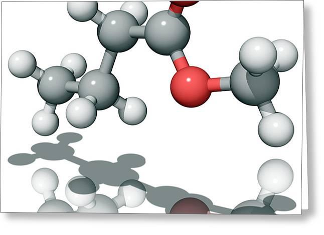 Methyl Butanoate Greeting Card by Laguna Design