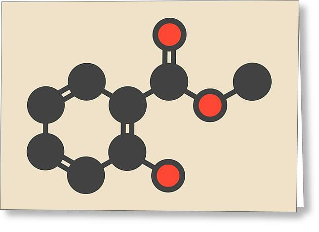 Methyl Salicylate Molecule Greeting Card by Molekuul