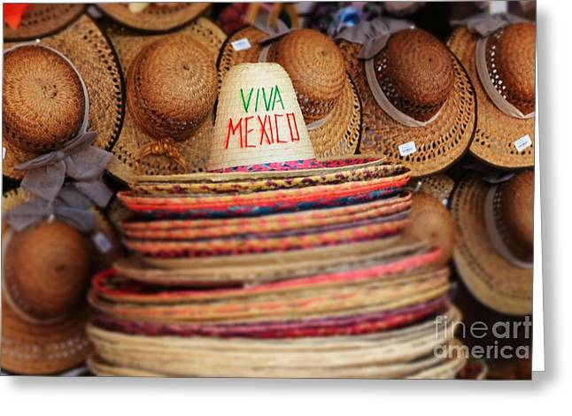 Mexican Hats Greeting Card by Sophie Vigneault