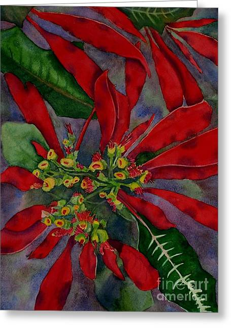 Mexican Wild Poinsetta Greeting Card